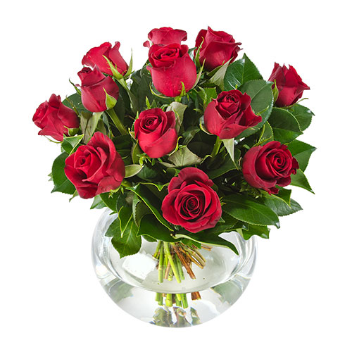 Eternal Love AUS 443 12 red roses in vase