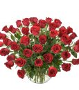 Wow AUS 464 50  red roses in glass vase