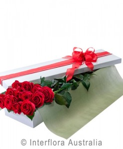 200-Presentation-Box-of-12-Long-Stemmed-Red-Roses