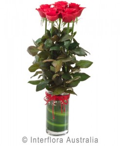 260-Vase-with-6-Red-Roses