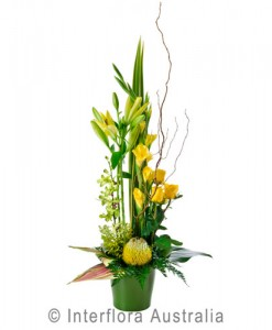 319-Large-Designer-Arrangement