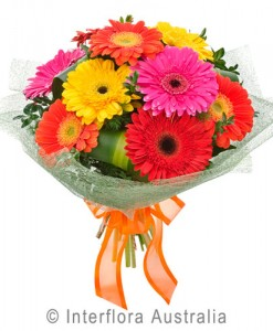 371-Bouquet-of-Mixed-Gerberas